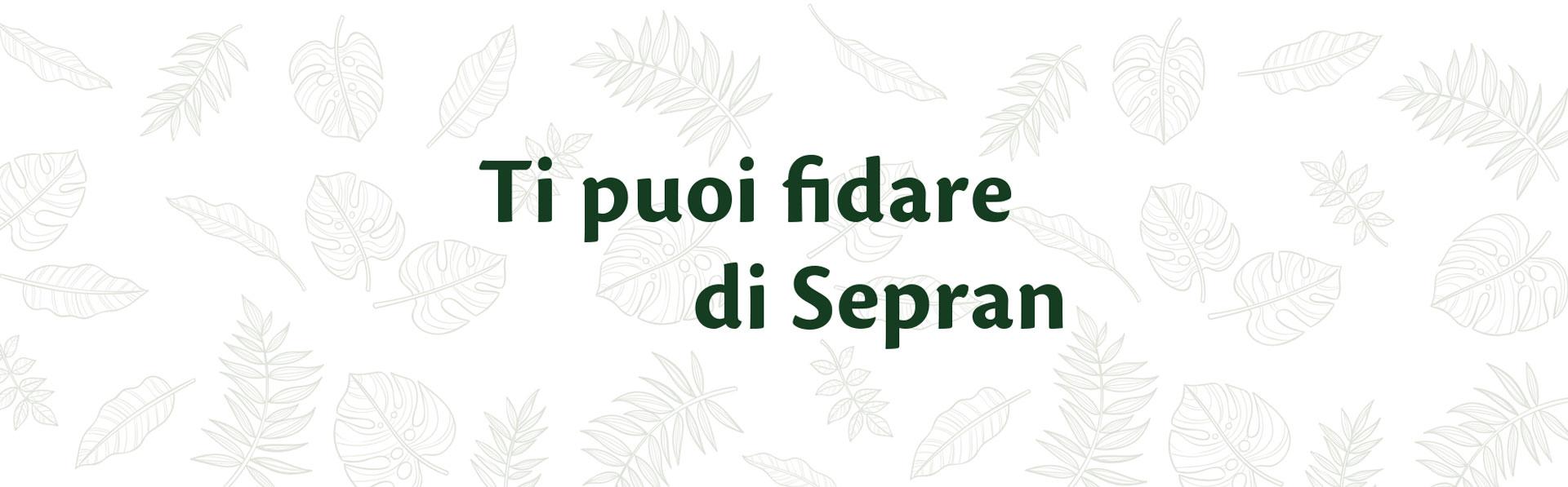 SEPRAN_chisiamo_header